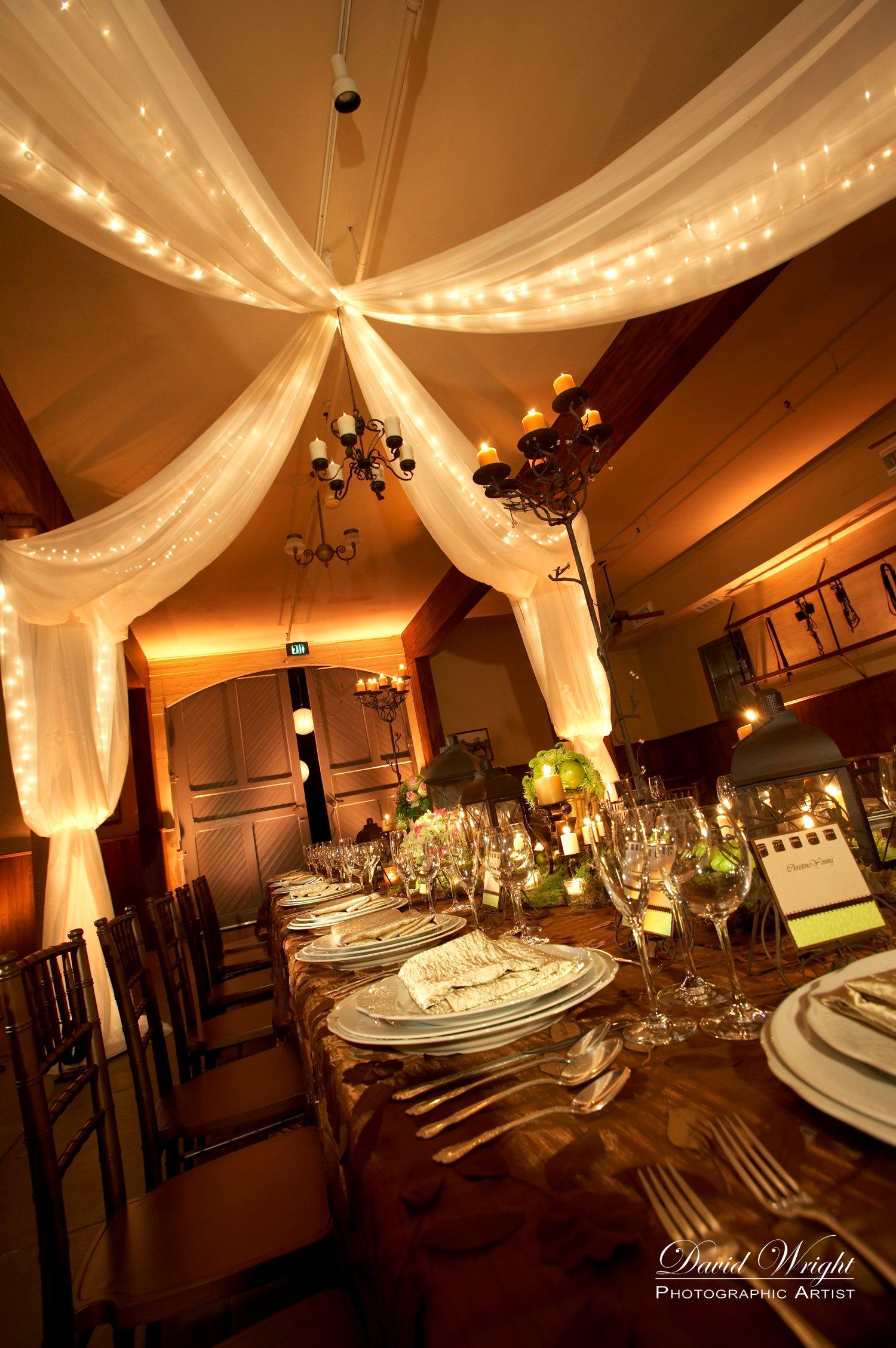 whim events twinkle lights wedding. Black Bedroom Furniture Sets. Home Design Ideas
